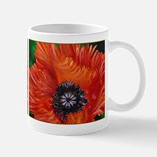 Red Oriental Poppy Mug