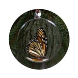 Monarch butterfly Round Ornaments