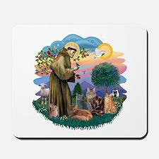 St Francis / 4 Cats Mousepad