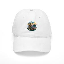 St Francis / 4 Cats Baseball Cap
