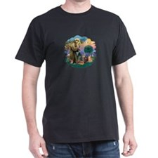 St Francis / 4 Cats T-Shirt