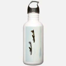 B-24 and B-17 Flying Water Bottle