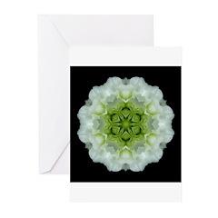 White & Green Begonia I Greeting Cards (Pk of