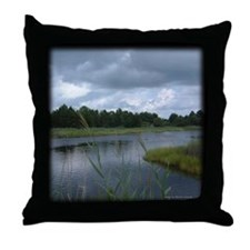 Site of the Battle of Great Bridge Throw Pillow