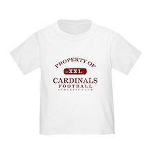 Property of Cardinals T