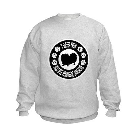 Pekingese Kids Sweatshirt