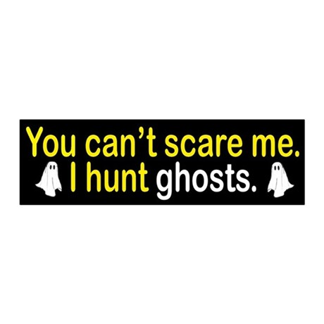 I Hunt Ghosts 20x6 Wall Decal