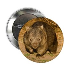 """Wombat 2.25"""" Button (10 pack)"""