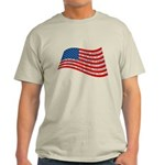 Pledge of Allegiance Light T-Shirt