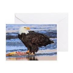 Morning Feast Greeting Cards (Pk of 10)