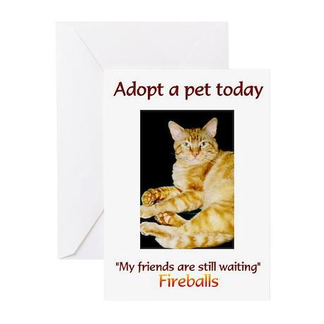 Adopt A Pet - Greeting Cards (Pk of 20)