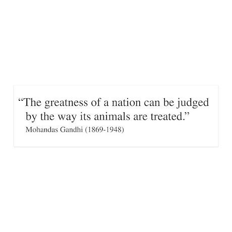 Gandhi quote 21x7 Wall Peel