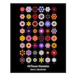48 Flower Mandalas (16x20 Poster, flower names)