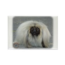 Pekingese 9R072D-026 Rectangle Magnet
