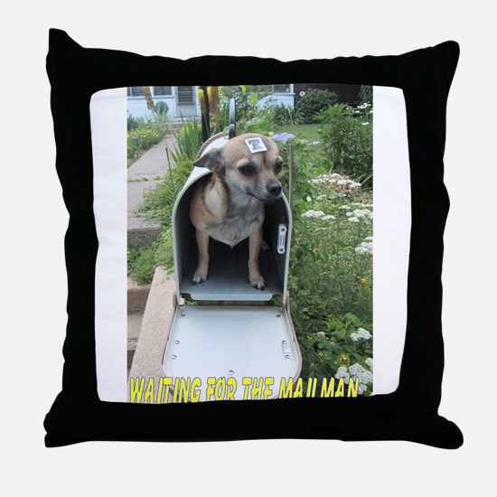 Waiting for the Mailman Throw Pillow