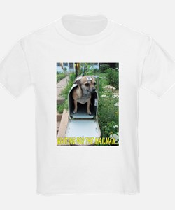 Waiting for the Mailman T-Shirt