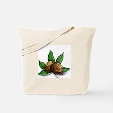 Ohio Buckeye Tote Bag