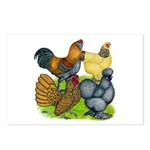 Purebred Bantam Quartet Postcards (Package of 8)