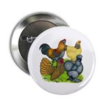 "Purebred Bantam Quartet 2.25"" Button (10 pack"