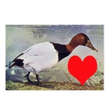 Love Duck Postcards (Package of 8)