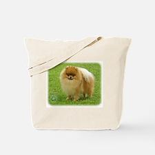 Pomeranian 8T087D-06 Tote Bag