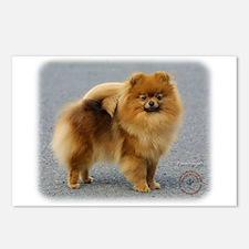 Pomeranian 9R042D-22 Postcards (Package of 8)