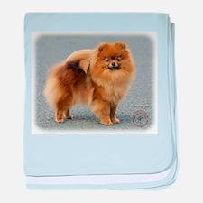 Pomeranian 9R042D-22 baby blanket