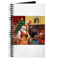 Santa's Shar Pei Journal