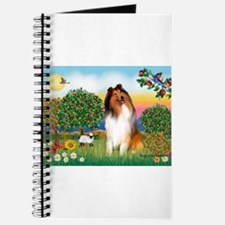 Appletrees / Collie (s) Journal