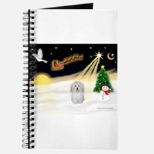 Night Flight/Coton #1 Journal