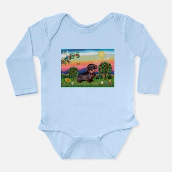 Bright Country / Dachshund (W Long Sleeve Infant B