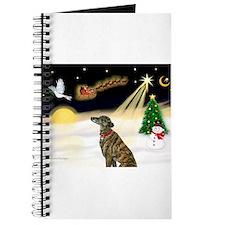 Night Flight/Greyhound(brin) Journal