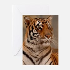 Regal Pose Greeting Cards (Pk of 10)