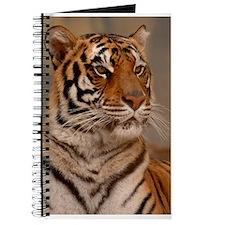 Regal Pose Journal