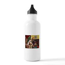 Santa/Spinone 4 Water Bottle