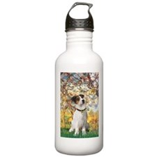 Spring / JRT Water Bottle