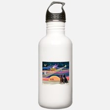 Xmas Star & Lab pair(ch&bl) Water Bottle