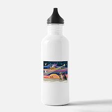 Xmas Star/2 Labs (Y+B) Water Bottle