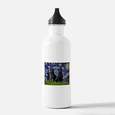 Starry Night / 2 Black Labs Water Bottle