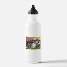 Pomeranian in Fantasyland Water Bottle