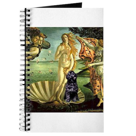 Venus / PWD Journal