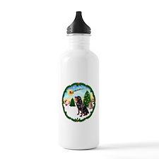 Take Off1/Rottweiler #6 Water Bottle