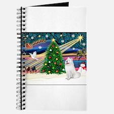 Xmas Magic & Samo Journal