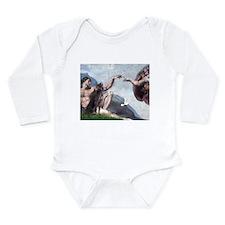 Weimaraner Creation Long Sleeve Infant Bodysuit