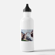 Weimaraner Creation Water Bottle