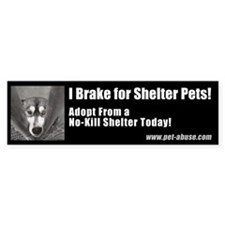 """I brake for shelter pets"" Bumper Sticker"