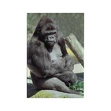 Big Gunns Gorilla Rectangle Magnet