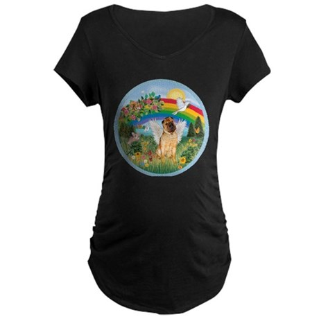 Rainbow - Shar Pei 2 Maternity Dark T-Shirt