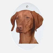 Vizsla Head Shot - Ornament (Oval)