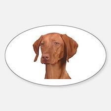 Vizsla Head Shot - Sticker (Oval)